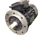 TECHTOP ELEKTROMOTOR ELECTRIC MOTOR